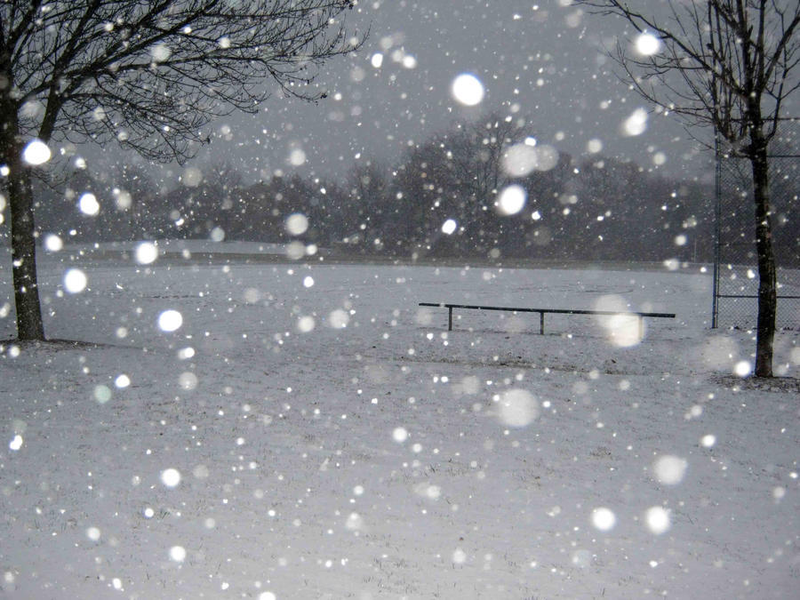 Anime Lonely Winter Lonely Winter Bench by
