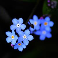 so blue baby. by bebefromtheblock