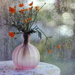 summer | flower