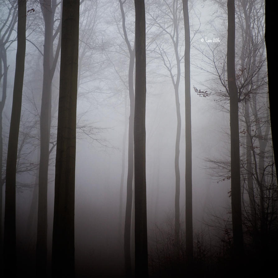 Neujahr im Nebel by Lain-AwakeAtNight