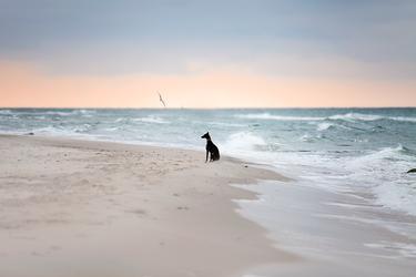 Luise am Meer by Lain-AwakeAtNight