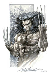 Weapon X commission by felipemassafera