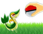 Gift: Snivy, I choose you! by SuperSaiyanBlue5
