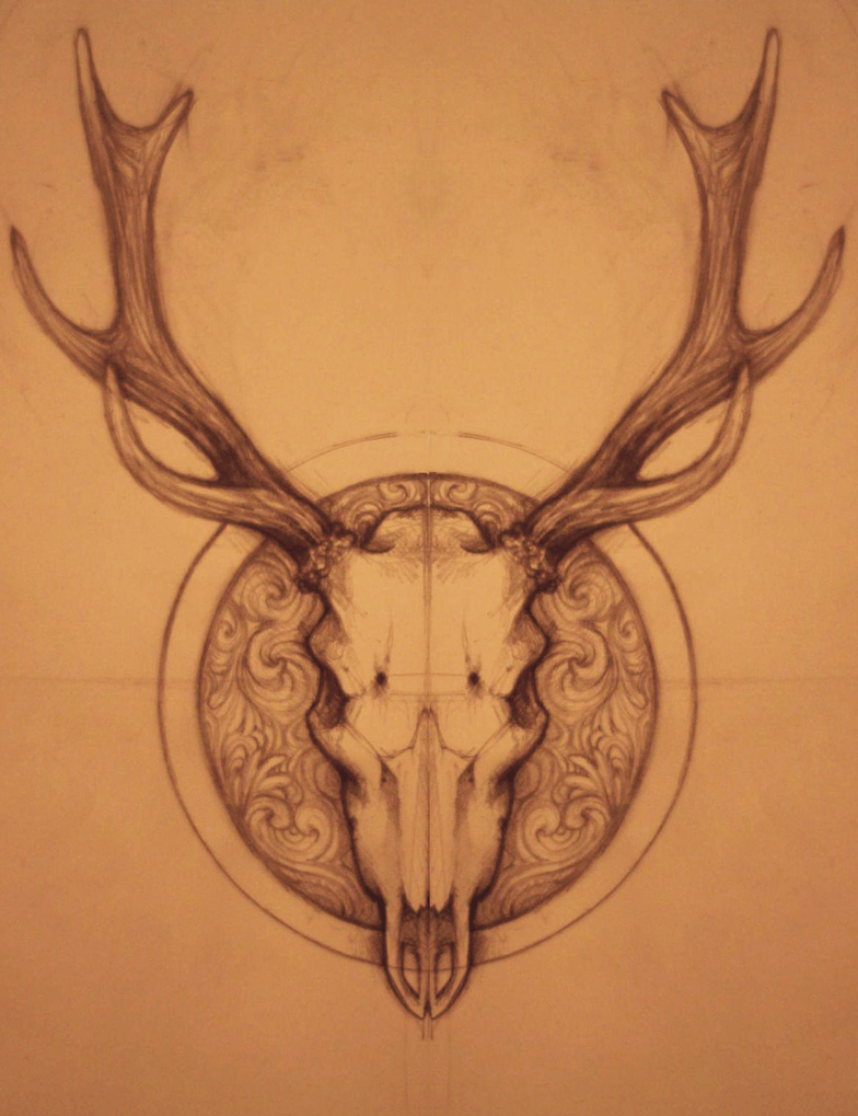 White Tail Deer Sckull Drawn: Top Whitetail Pencil Drawings Images For Pinterest Tattoos