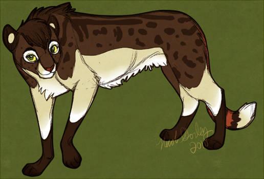 Nightingalle cheetah