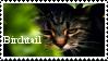 Birchtail by InkehisME