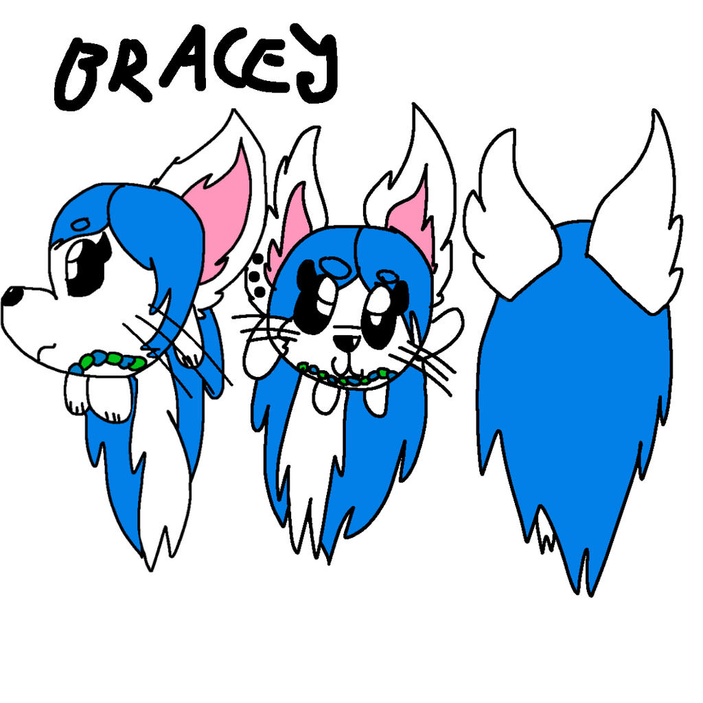 Bracey Ref by GameyGemi