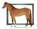 Horse Auction: CLOSED