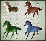 Horse Adoptable: Yearling Batch