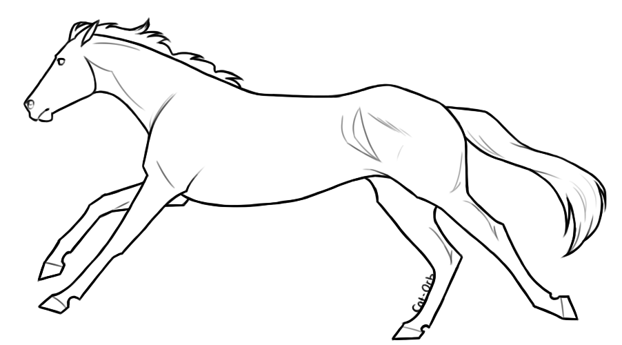 thoroughbred coloring pages - photo#35