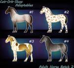 Horse Adoptable: Adult Batch - 2