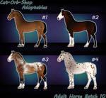 Horse Adoptable Adult Batch - 10