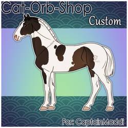 Horse Custom | CaptainMaddi