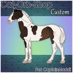 Horse Custom   CaptainMaddi