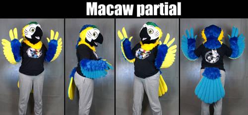 (For sale) Macaw Mini Partial Fursuit
