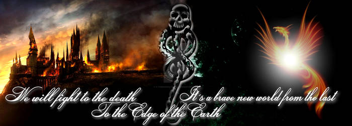 Death Eaters vs Order of phoenix