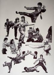 Kungfu fighting by MLBOA