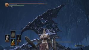 Dark Soul 3 Xing Cai vs Midir - Unexpected victory