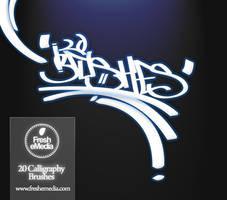 20 Calligraphy Brushes by freshemedia