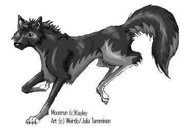Moonrun by KigaWeirdo
