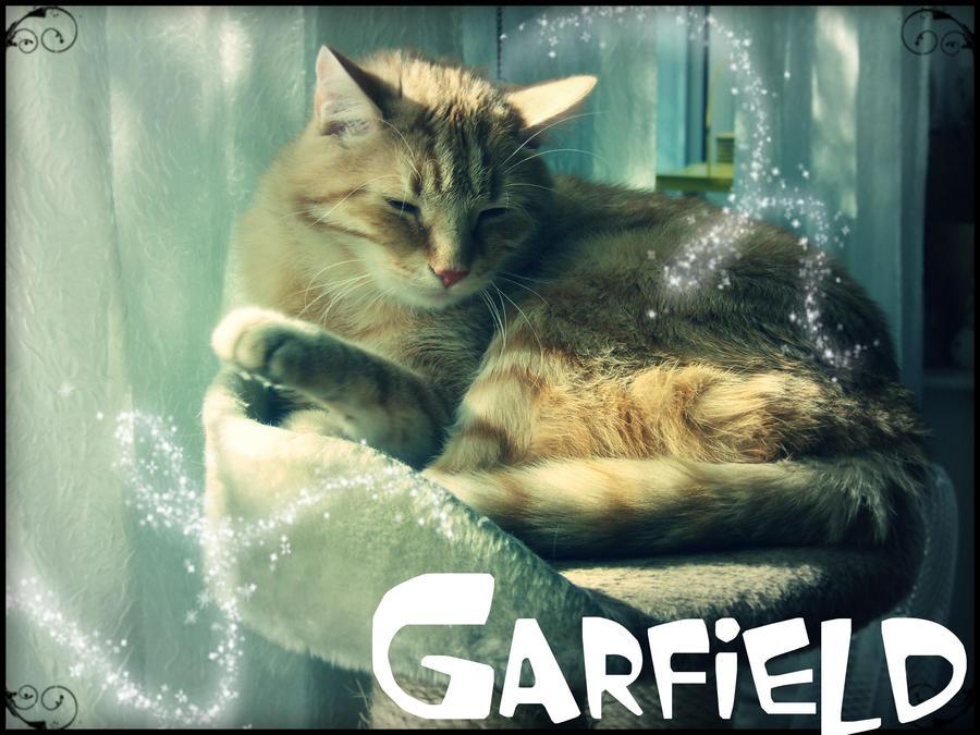 R.I.P. Garfield by BLACK-SAYURI