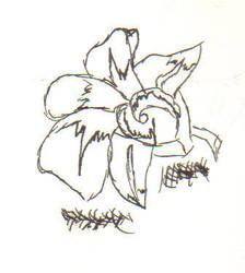 Orchid:Uncolored by Harken-My-Love