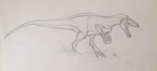 Megaraptorid