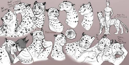 Furie leopard faces by Mau-Acheron