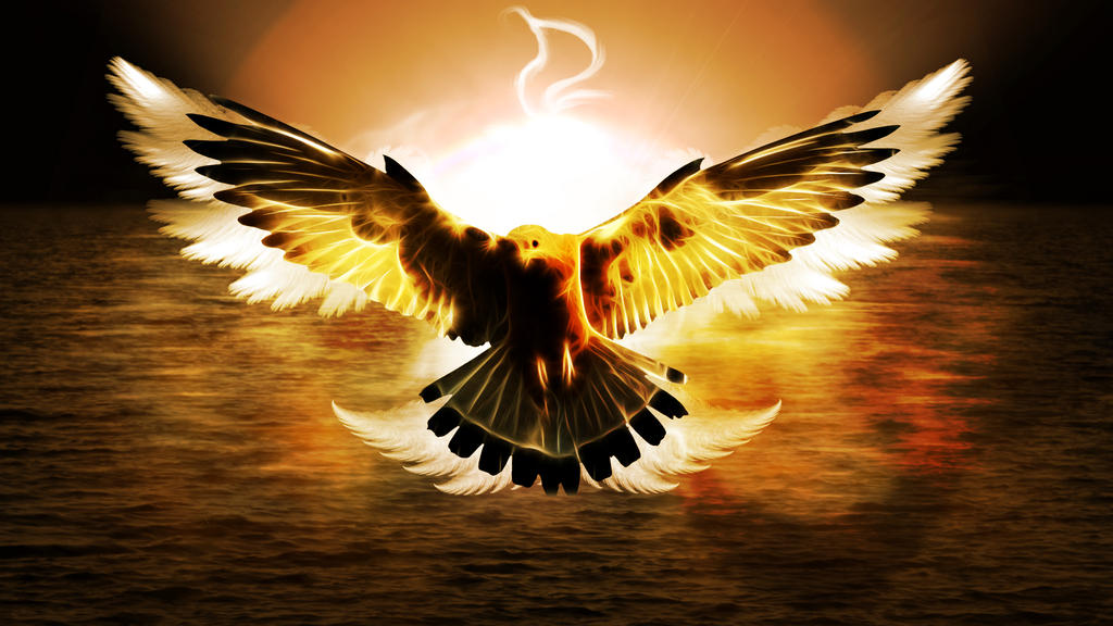 Flame Eagle (Wallpaper) by Hardii on DeviantArt