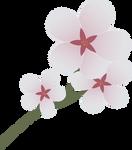 Cutie Mark: Cherry Blossom