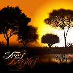 Trees Silhouettes Photoshop Brushes