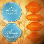 Vintage Labels Brushes