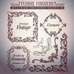 Premium Vintage Floral Corners