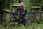 Ravenheart V