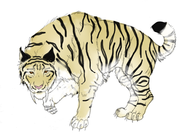 how to draw a saber tooth cat