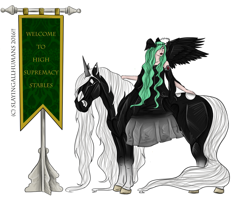 HSS Welcome Banner by slayingallhumans