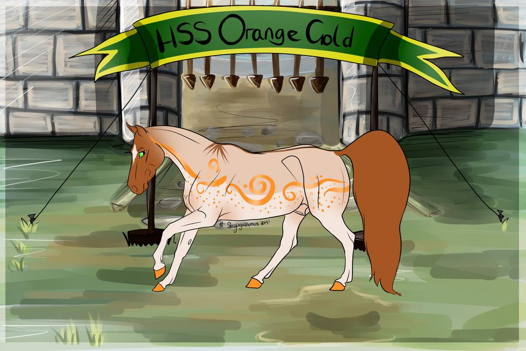 N5241 HSS Orange Gold