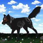ID 26 Kumori Wolf Import | CLOSED!