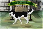 ??? HSS Shadow Bolt