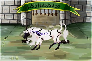 886 HSS Hullabaloo