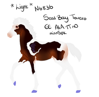 N6836 Padro Foal Design - Mine by slayingallhumans