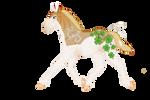 585 Favarikund Foal Design