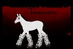TTB Foal Design #086