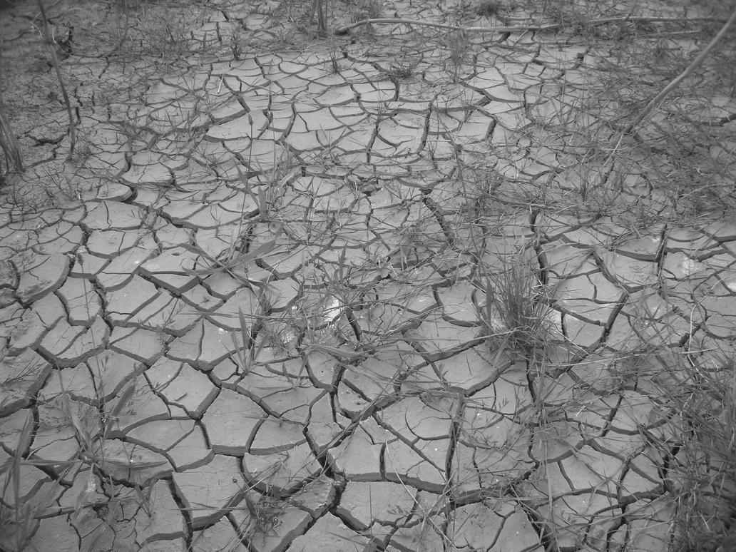 Dry Land by Grumbeerkopp