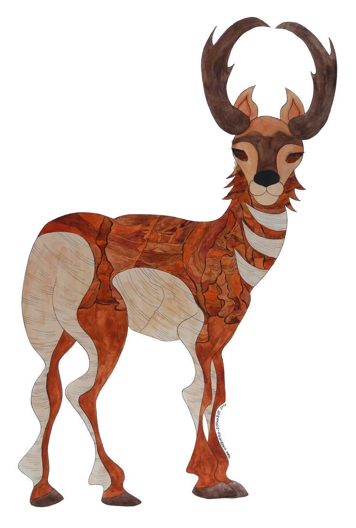 prong horn antelope antelope canyon arizona by capturingstarlight rh capturingstarlight deviantart com
