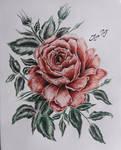 Trnova Ruza by Joze17