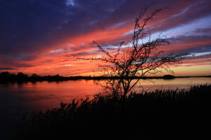 Sunset Collection: River 2 by Germanstock