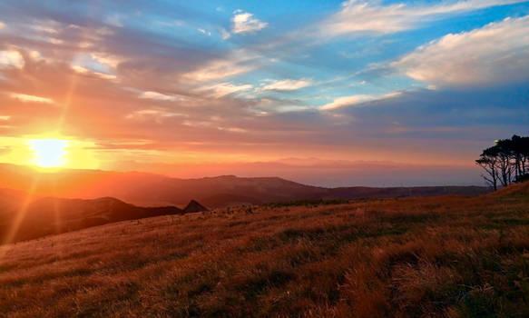 Mount Kaukau Landscape