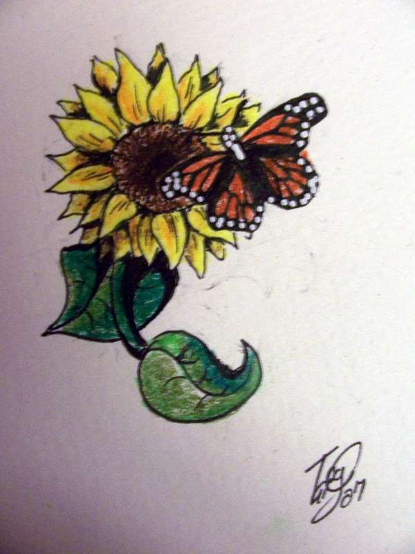 tattoo butterfly on sunflower by nonnyarie on deviantart