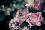 flowers 2 by ClickClickBangUK